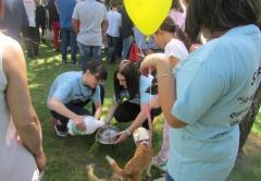 YUPI continua a promover o voluntariado na Escola D. Sancho I