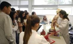 Laboratórios Abertos 2019